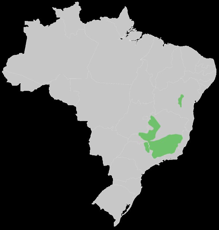 new brazil map