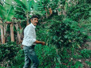 AUDON SOLANO FROM FINCA EL TRIUNFO, HUILA, COLOMBIA
