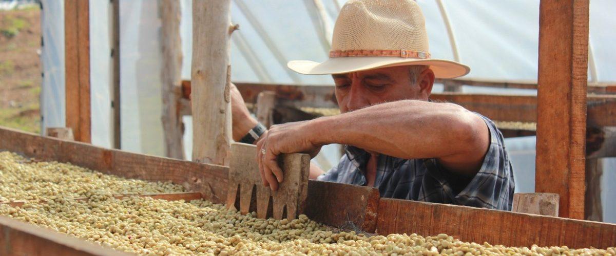 drying tables_Las delicias
